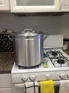 Step 1: Start with a gargantuan pot