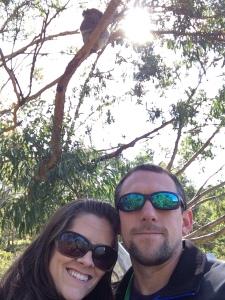 More koala selfies!
