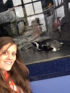 Penguin Selfie!